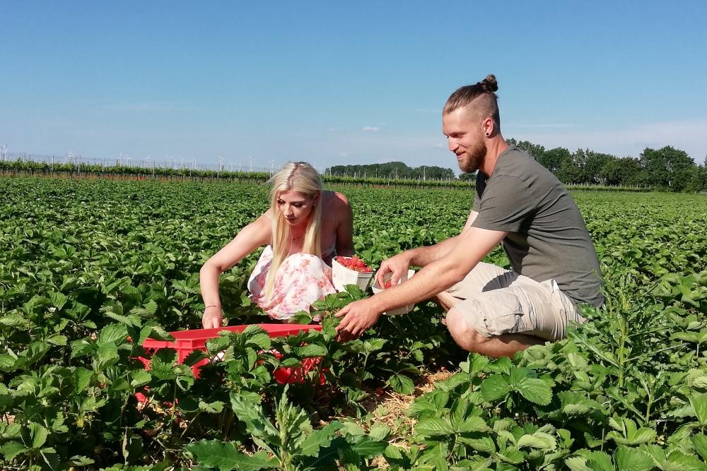 Katja und Martin Kaintz Bioweingut Heideboden