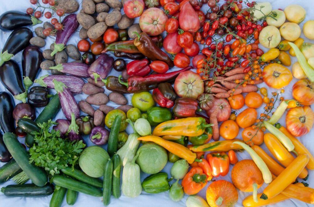 Sortenvielfalt Biohof Pölzer